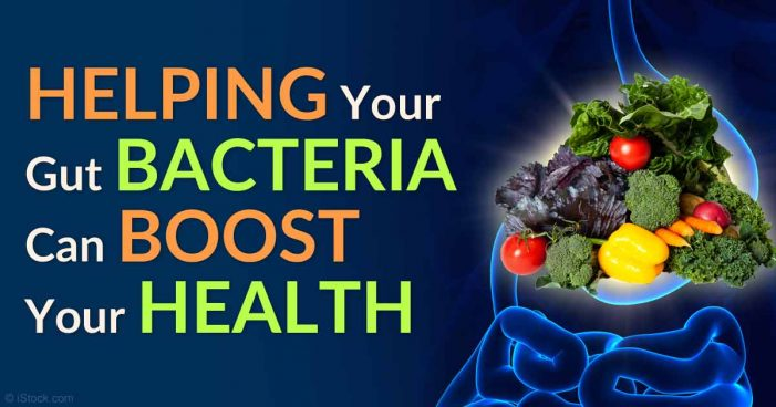 How to re-establish healthy gut flora after taking antibiotics